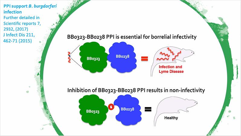 Multifaced Host-Pathogen and Protein-pro