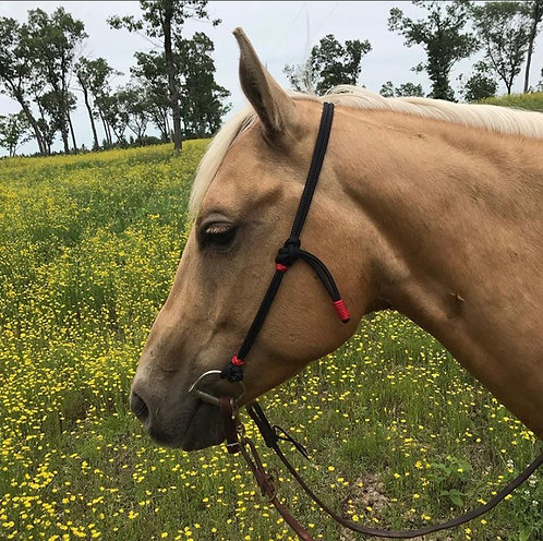 Quick change rope headstall