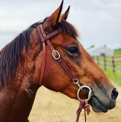 Quick Change Headstall
