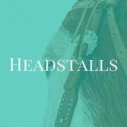 Headstalls.png