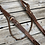 Thumbnail: Fancy Copper Spotted Browband