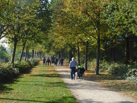 Vlaamse Vereniging voor Spina Bifida en Hydrocephalus vzw (VSH)