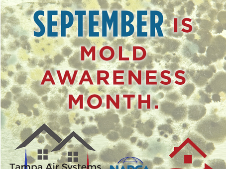 September is Mold Awareness Month