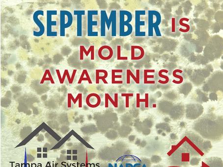 September is Mold Awareness Month