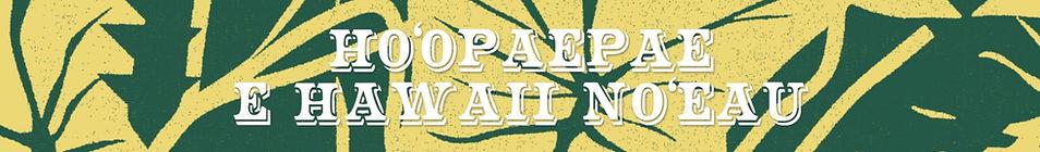 paepae2019バナー_edited_edited.jpg