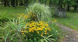Lear Road Garden