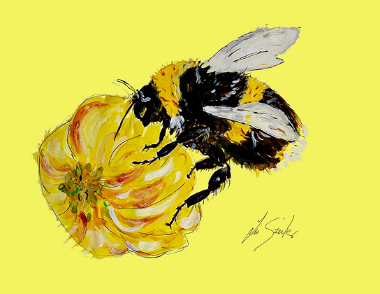 Bumble Bee yellow background