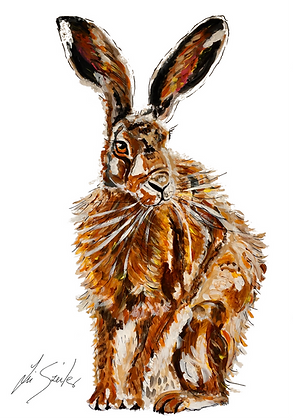Old Hare Sitting