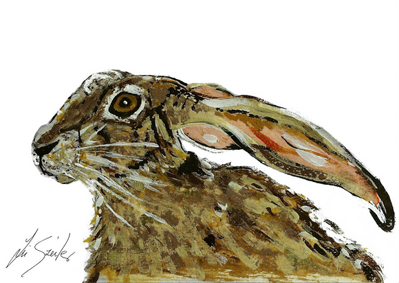 Hare withPink Ears