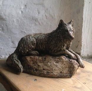 Wolf on rock