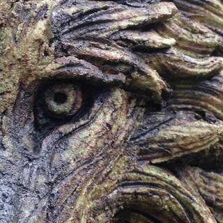 Wolf eye     (detail)
