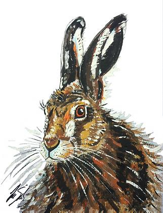 Hare Head