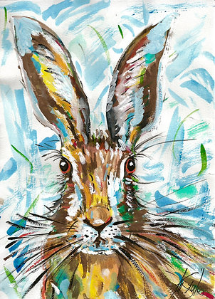Hare in a Whirl