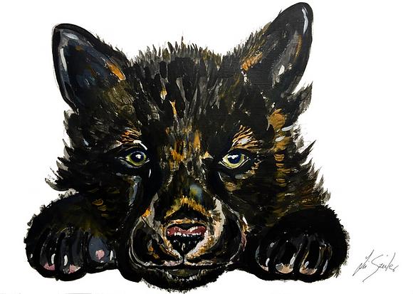 Black Wolf Pup