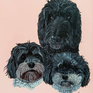 Betty, Bentley and Baxter