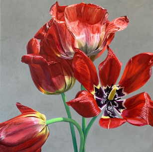 Red Tulips No. 2