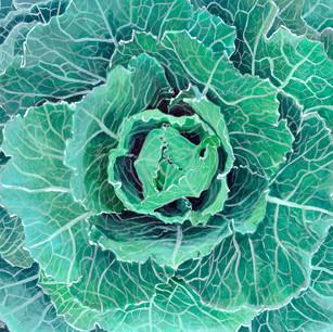 Fall Kale