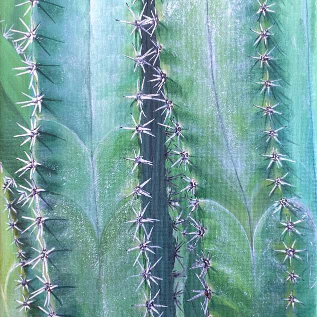 Columnar Cacti