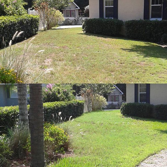 Before and after mowing