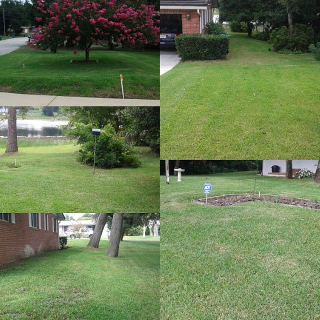 #lawnservice #lawncare #lawnpride #landscape