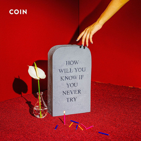 'How Will You Know If You Never Try' Coin
