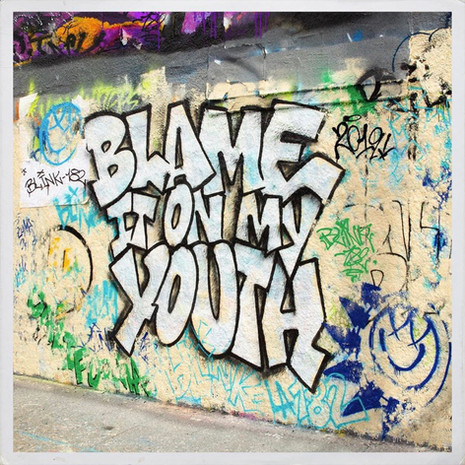 'Blame It On My Youth' Blink 182
