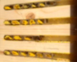 Solitary Bee Nest Box