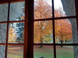 couleurs d'automne Assenois