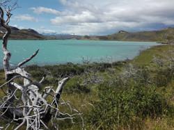 Chili Parc national Torres del Paine 1