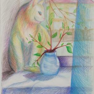 Радужная кошка