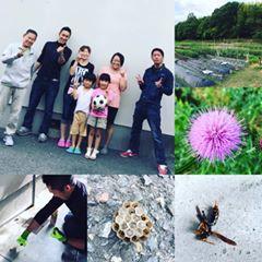 奈良|便利屋|引っ越し|不要品回収|害虫駆除