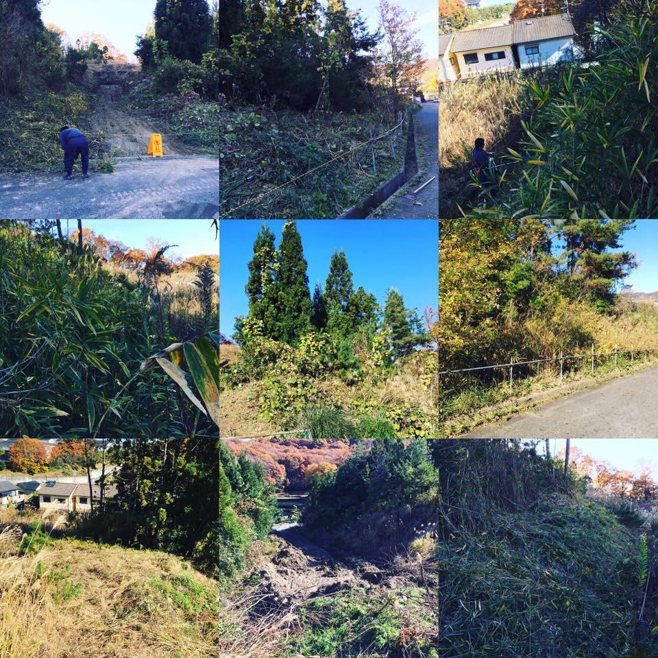 奈良 草刈り 伐採