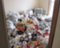 ゴミ屋敷・マンション・アパートタイプ