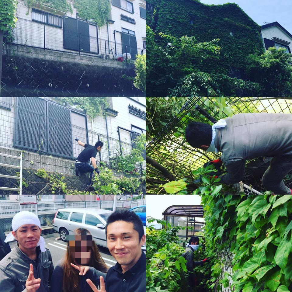 奈良|便利屋|草刈り|伐採