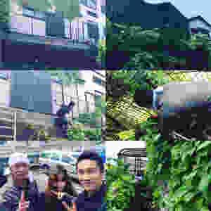 奈良 便利屋 草刈り 伐採