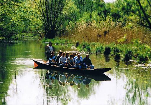 Taubergießentour mit dem Fischerboot, Stocherkahn
