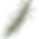 Pine Spruce Branches 9_edited.png