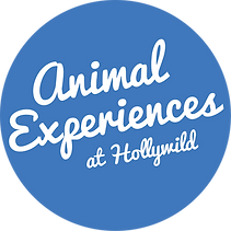 Animal Experiences Logo PMS 2727.png