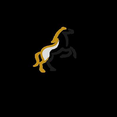 Envy Self Drive Logo-01.png