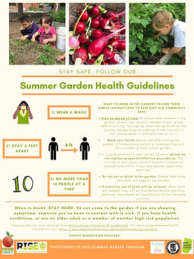 Summer Garden - Infographic.jpg