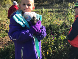 First Grade Trip to Retreat Farm
