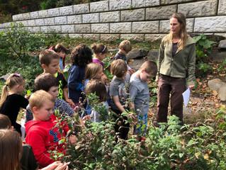 First grade gardening