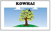 Kowhai.PNG