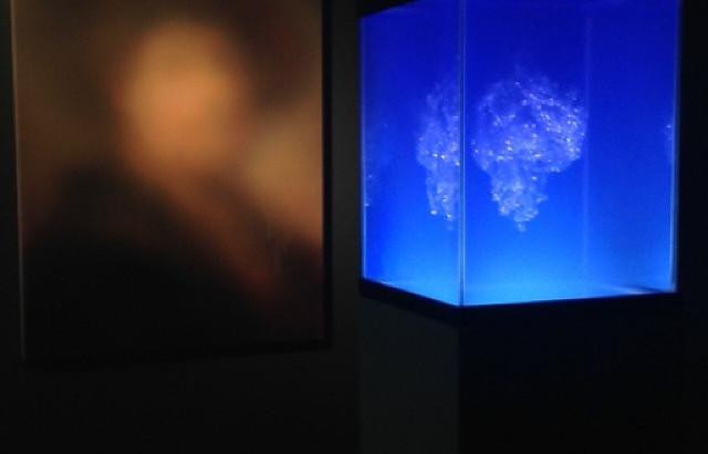 Installation at fabien castanier gallery