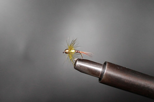 Gold Head Olive Cruncher