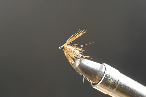 Water Caddis