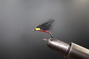 Black And Yellow Hotspot Cormorant