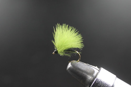 Olive Wing CDC F Fly