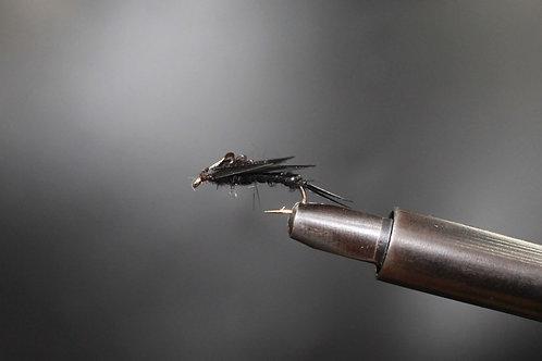 Black Stonefly Nymph