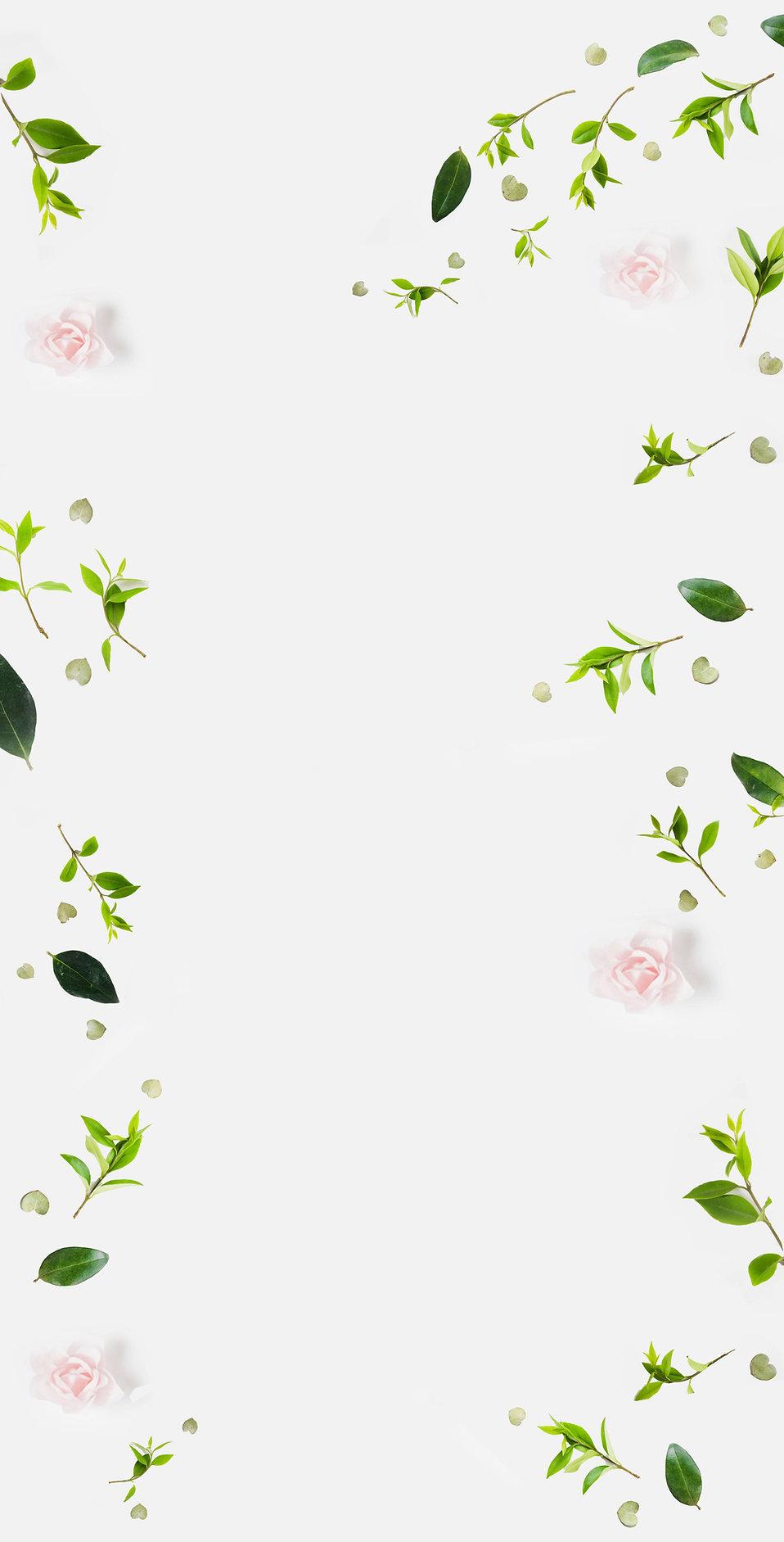 web background floral (1).jpg
